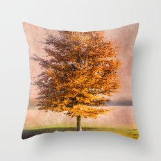 A sunny autumn day Throw Pillow