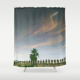 Flying sky fish Shower Curtain
