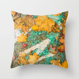 Broken glass and leafs Throw Pillow