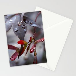 Japanese Maple Seeds II Stationery Cards
