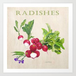 Radishes and their Blossom Art Print