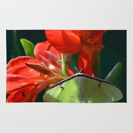 """""""Anticipation Of The Night"""" - Luna moth Painting Rug"""