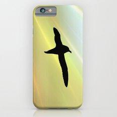 In the sun iPhone 6s Slim Case