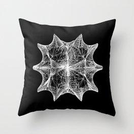 The Calabi-Yau Manifold Throw Pillow