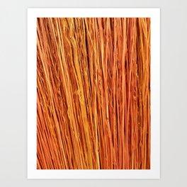 Orange Brushwood Photography Art Print