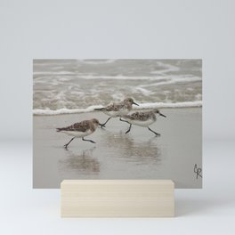 Sandpipers Mini Art Print