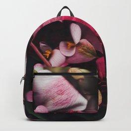 Seja II Backpack