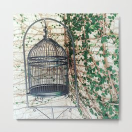 Ivy Birdcage Metal Print