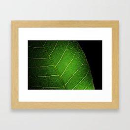 Texture leaf Framed Art Print