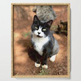 Heart Nose (Lanai Cat Sanctuary) Serving Tray