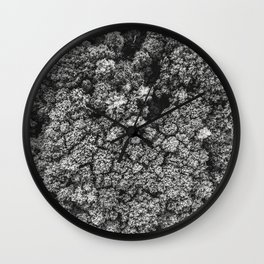 Forest from the bird view Wall Clock