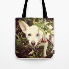 Looking Lobo Tote Bag