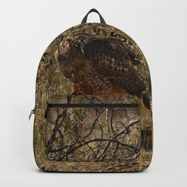 6337 - Red-Tailed Hawk Feeding Backpack