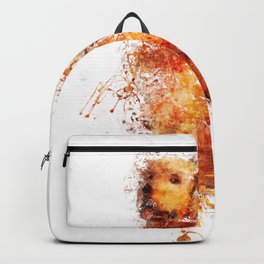 Clever Eyes Backpack