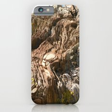 Big Rock by the beach iPhone 6s Slim Case