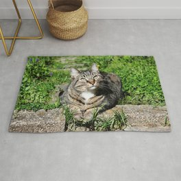 Thinking Cat in Sunlight Portrait Photography Rug