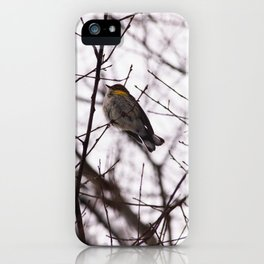 Snowy Feathers iPhone Case