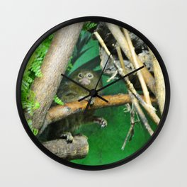 Marmoset Wall Clock