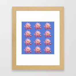 Rows with pink waterlilies, isolated on light blue background Framed Art Print