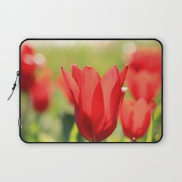 Red tulips in backlight Laptop Sleeve