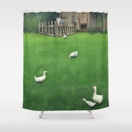 A Walk Shower Curtain
