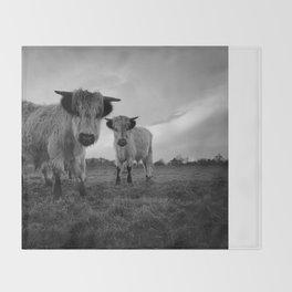 High Park Cow Mono Throw Blanket