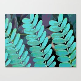 Young Leaves Canvas Print