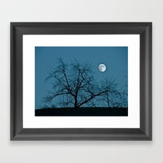Full Moon 11-8-11 Framed Art Print