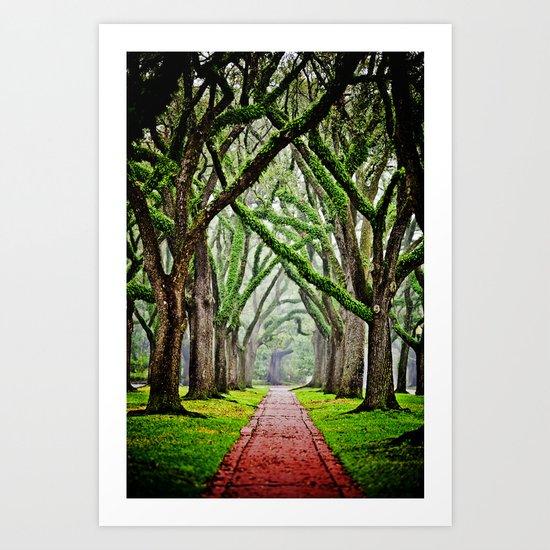 Tree-Lined Art Print