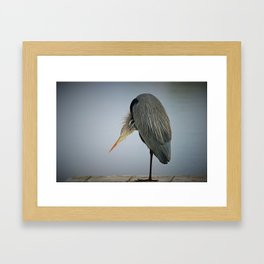 An Itch Framed Art Print