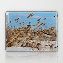 Tame a Wild Wind- horizontal Laptop & iPad Skin