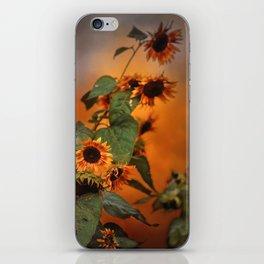 Autumn Sunflowers iPhone Skin