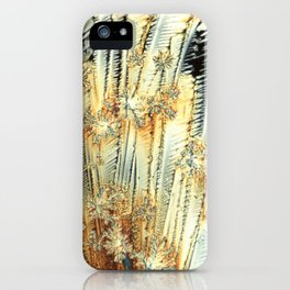 Vitamin C Sources for Happiness iPhone Case