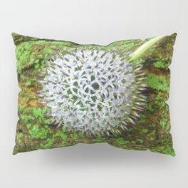Globe Thistle. Pillow Sham