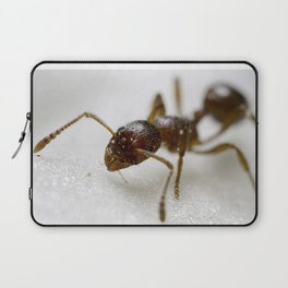 Extreme Macro Ant on a Clematis petal Laptop Sleeve