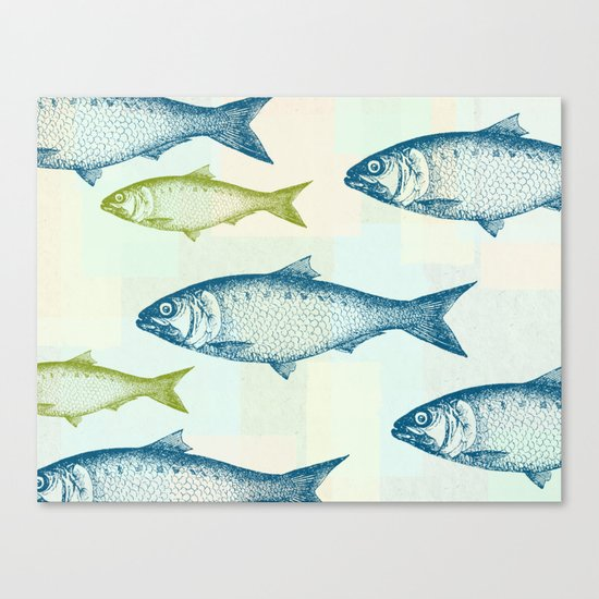 Vintage Fish Canvas Print