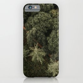 Dutch forest from above   Colourful Travel Photography   Veluwe, Holland (The Netherlands) iPhone Case