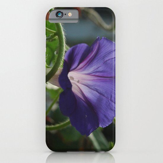 Morning Glory iPhone & iPod Case