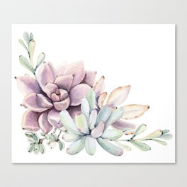 Desert Succulents on White Canvas Print