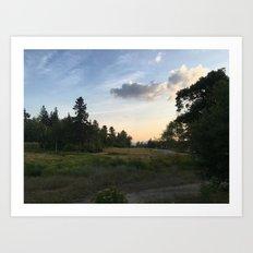 Lake Placid Art Print