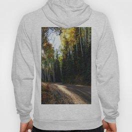 Mountain Aspen Autumn Road Hoody