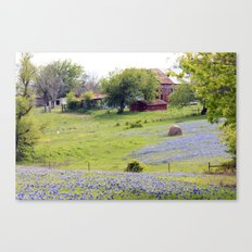 Old Red Barn and Rolling Bluebonnet Hills Canvas Print