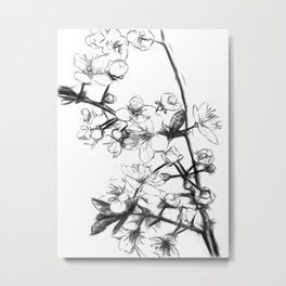 Cherry Blossoms Minimal Drawing Metal Print