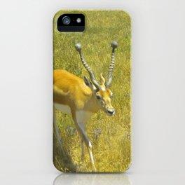 Care Free iPhone Case