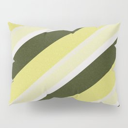 Cactus Garden Stripes 3D Pillow Sham