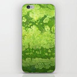 Watermelon texture iPhone Skin