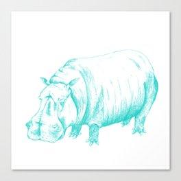 Hippo Turqoise Canvas Print