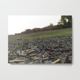Fun On The Range Metal Print