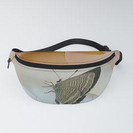 Butterfly on Pink Rose Fanny Pack