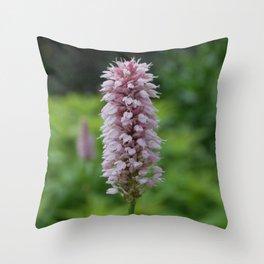 Blushing Bridewort Throw Pillow